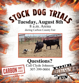 Stock Dog Trials