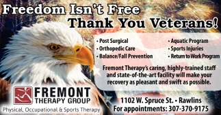 Fredom Isn't Free Thank You Veterans!