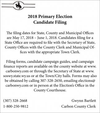 2018 Primary Election