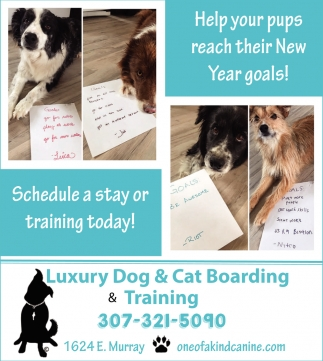 Schedule a Stay or Training Today!
