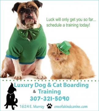 Luxury Dog & Cat Boarding