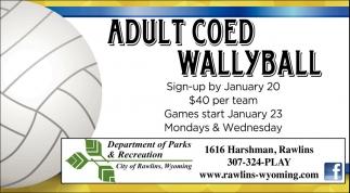 Adult COED Wallyball